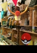 -7-10% PokemonGo @ «North Bukovyna Store»